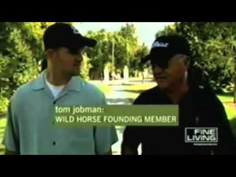 golf video